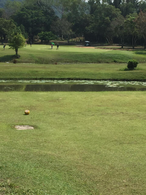 Plutaluang Navy Golf Course – Great Golf, a Harrier Jet and Popeye make this a most enjoyable course 5