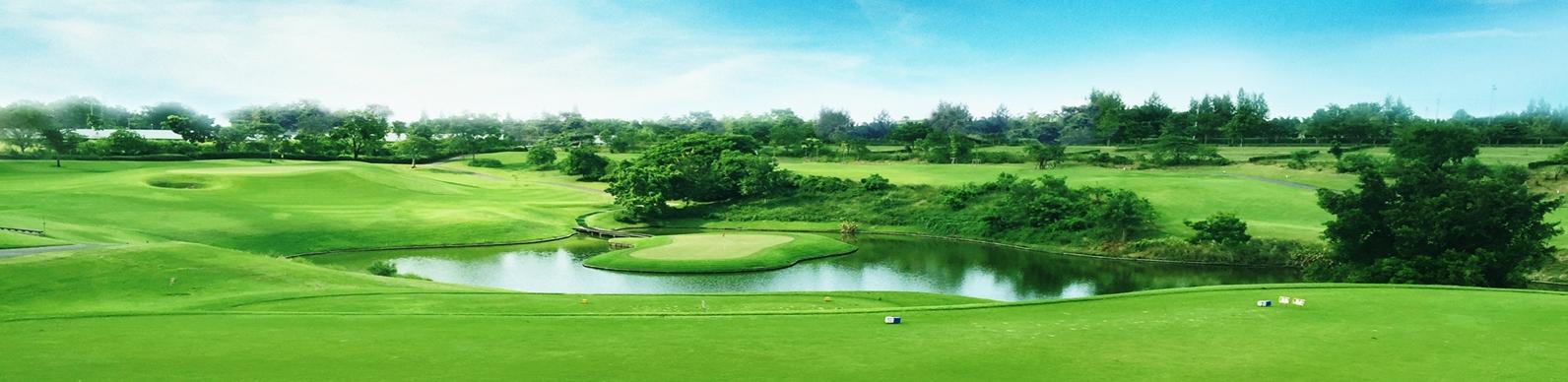 Golf Enquiry 4