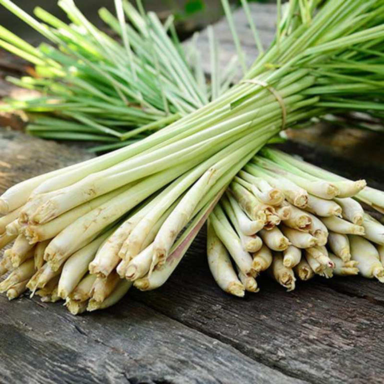 Thai Herbs - Lemongrass, adds flavour and so healthy 4